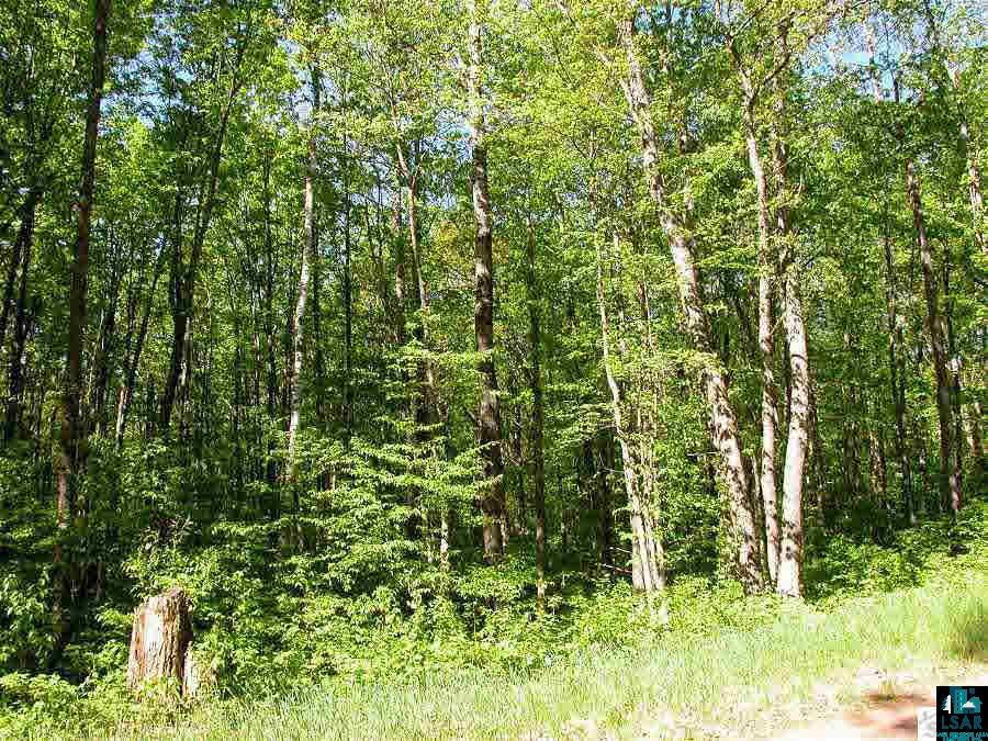 Lot 55 Ash Ct, CABLE, WI 54843