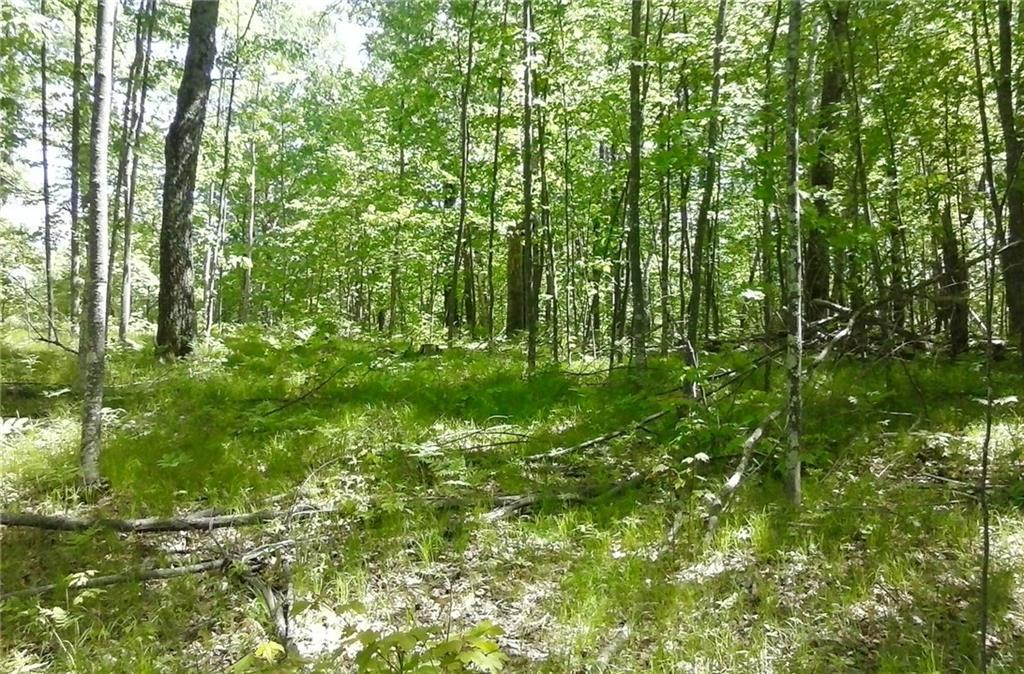 Lot 67 Winter Green, JACKSON, WI 54830