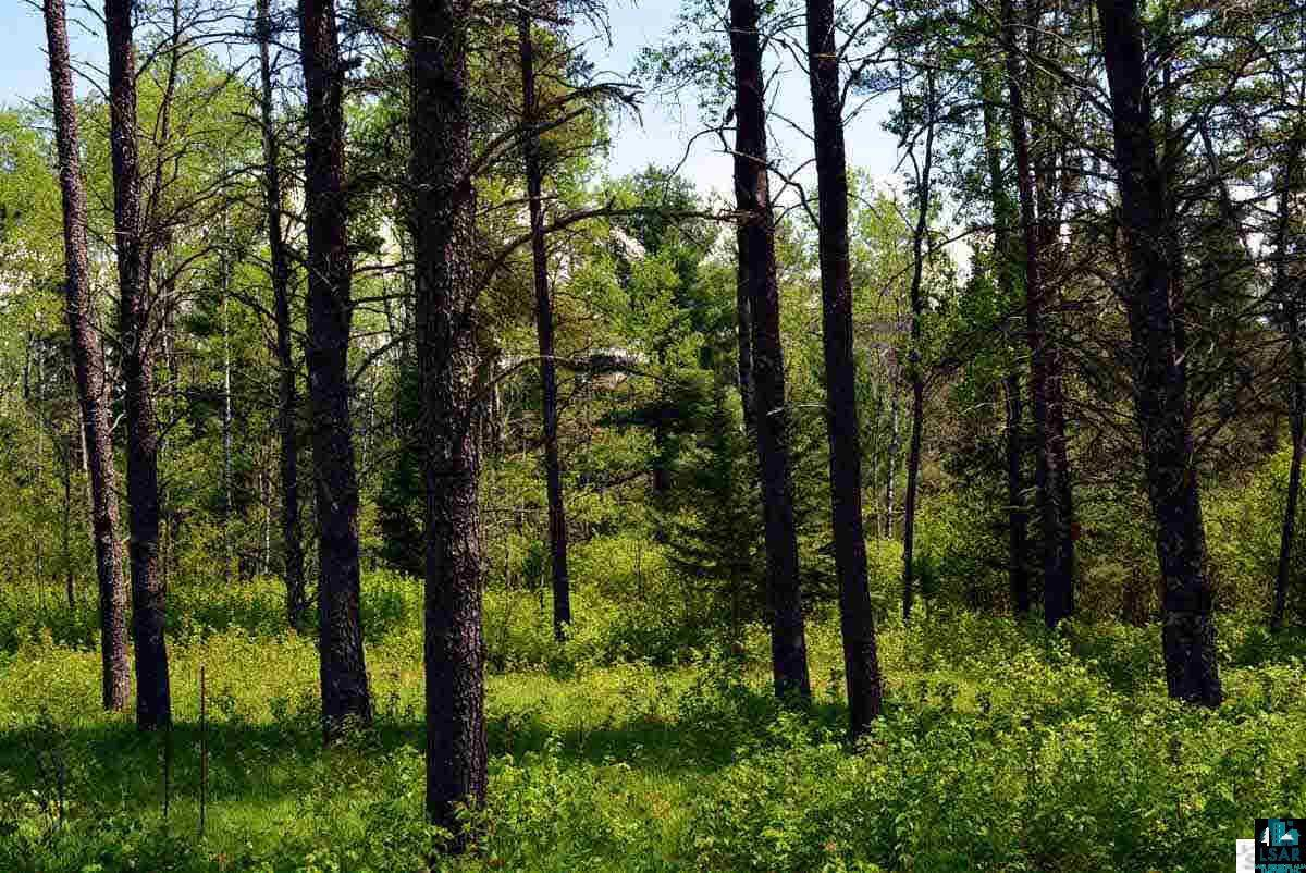 Lot 54 Silver Birch Dr, CABLE, WI 54821