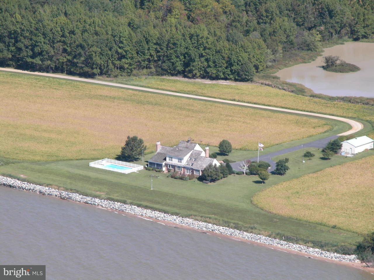 Farm for Sale at 7030 Swan Creek Rd Rock Hall, Maryland 21661 United States