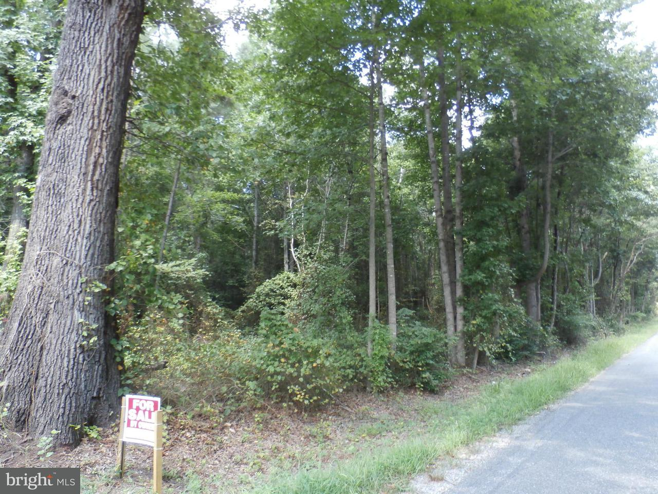 Land for Sale at 0 Clarkes Store Caret, Virginia 22436 United States