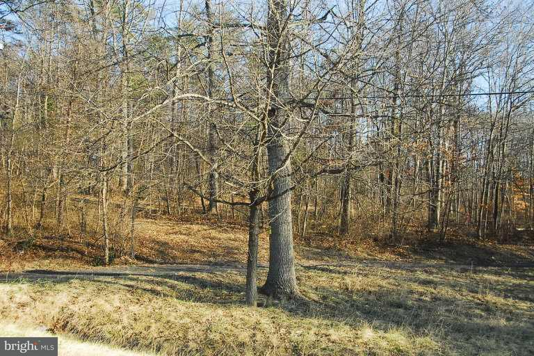 Land for Sale at 17310 Lee Hwy Amissville, Virginia 20106 United States