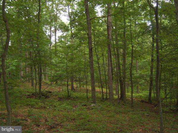 Additional photo for property listing at 24 Kessel Road  Great Cacapon, West Virginia 25422 United States