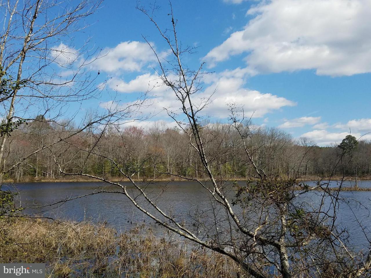 土地 为 销售 在 NOT ON FILE NOT ON FILE Milford, 弗吉尼亚州 22514 美国
