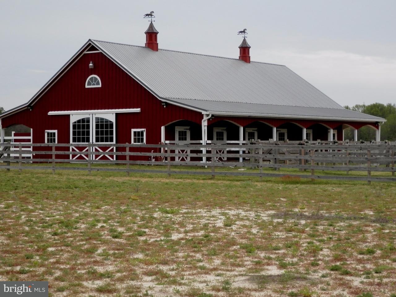 Farm / Hof für Verkauf beim 290 N MYRTLE Street Hammonton, New Jersey 08037 Vereinigte Staaten