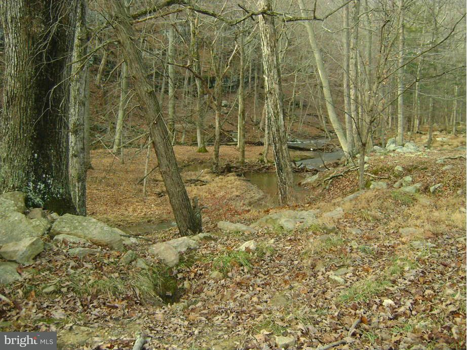 Additional photo for property listing at Rt 127  Bloomery, West Virginia 26817 United States