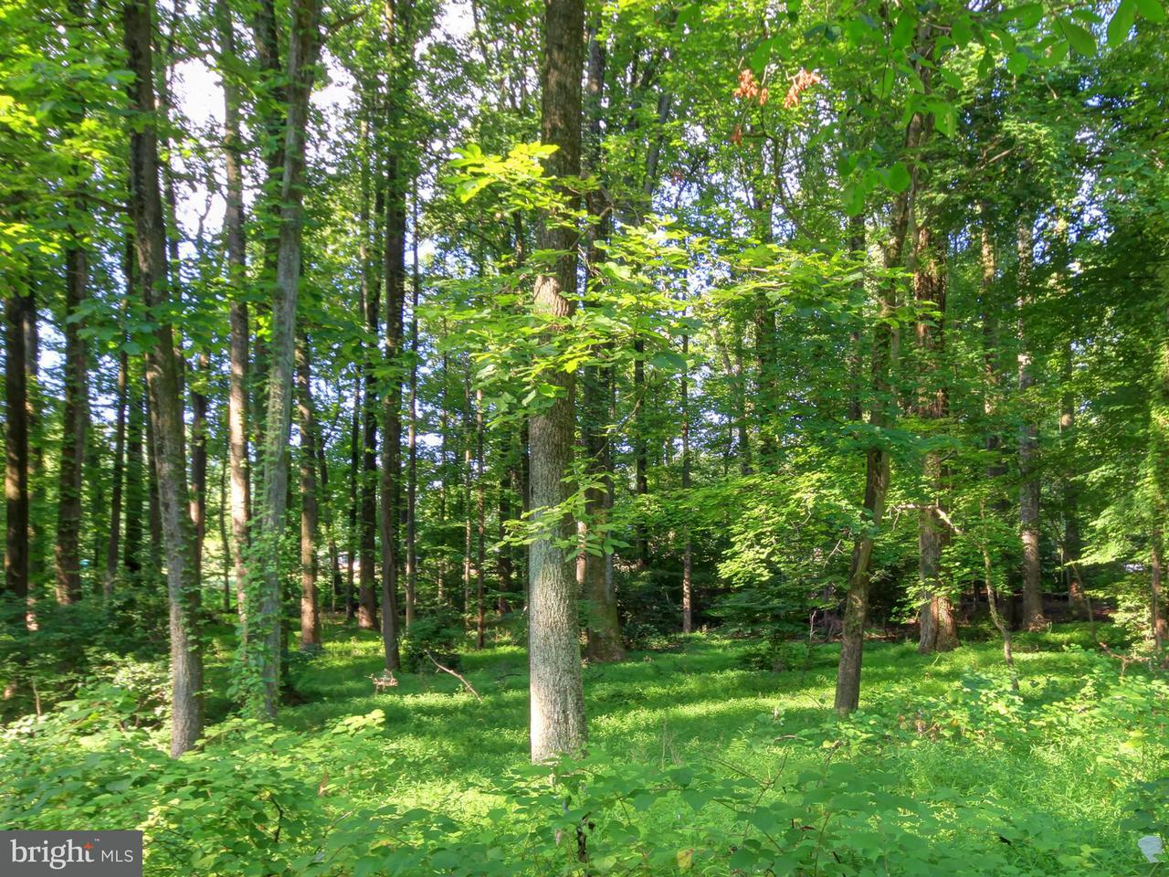 Land for Sale at 10241 AKHTAMAR Drive 10241 AKHTAMAR Drive Great Falls, Virginia 22066 United States