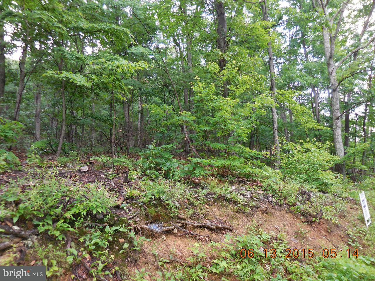 Additional photo for property listing at Willow Trl  Winchester, Virginia 22602 United States