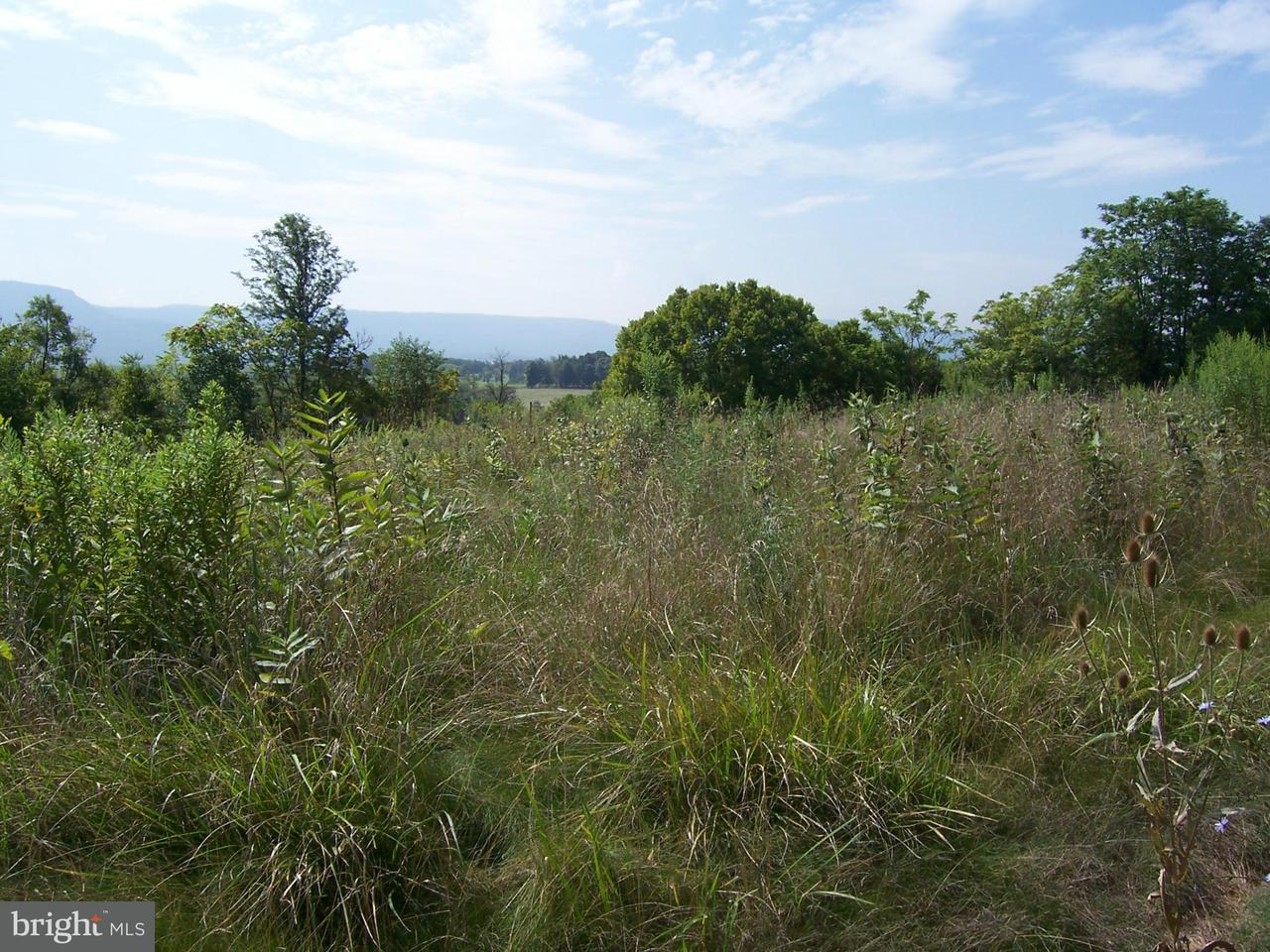 Additional photo for property listing at South Middle Road  Mount Jackson, Virginia 22842 United States