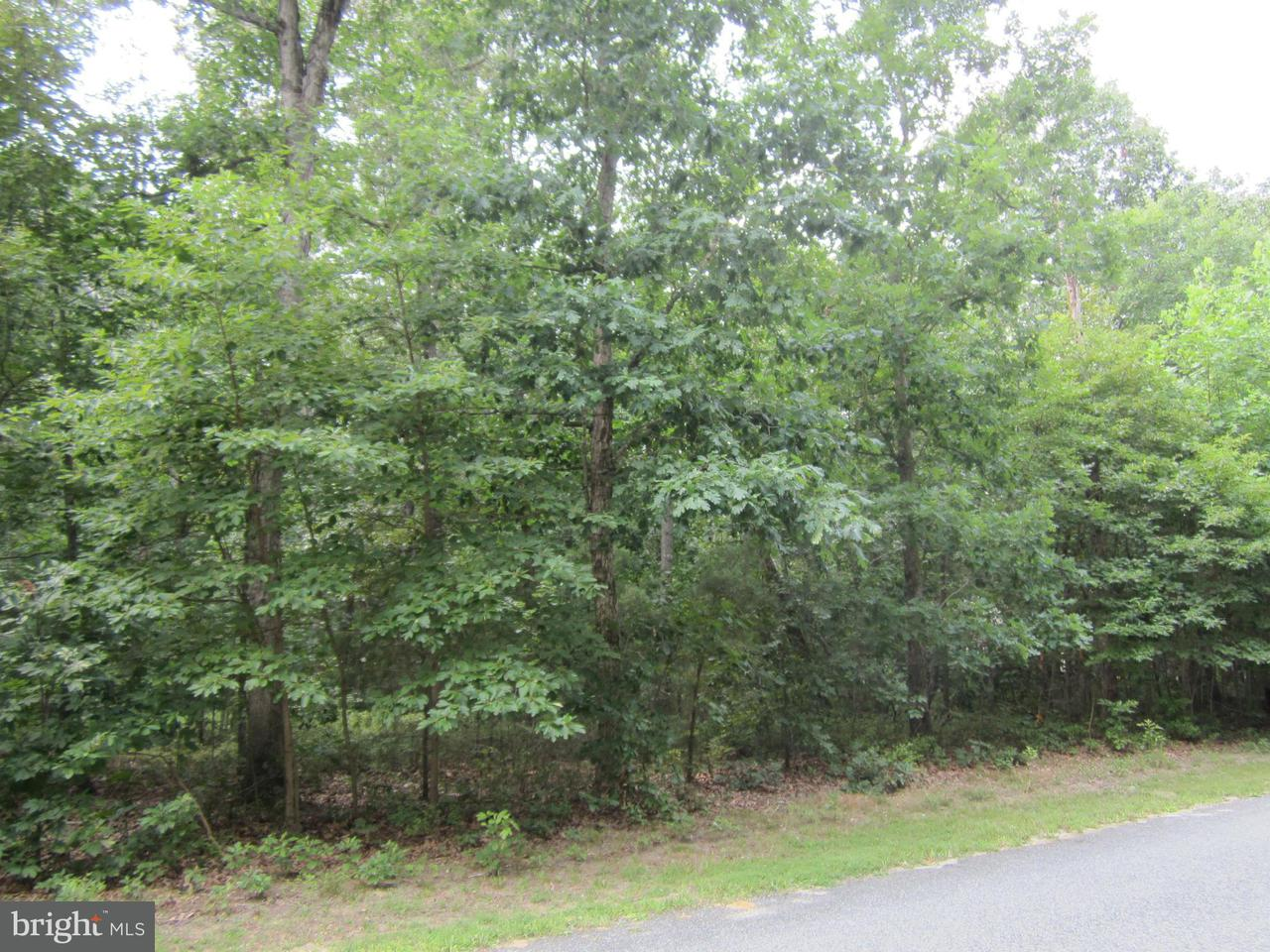 Land for Sale at Tubmill Branch Rd Greensboro, Maryland 21639 United States