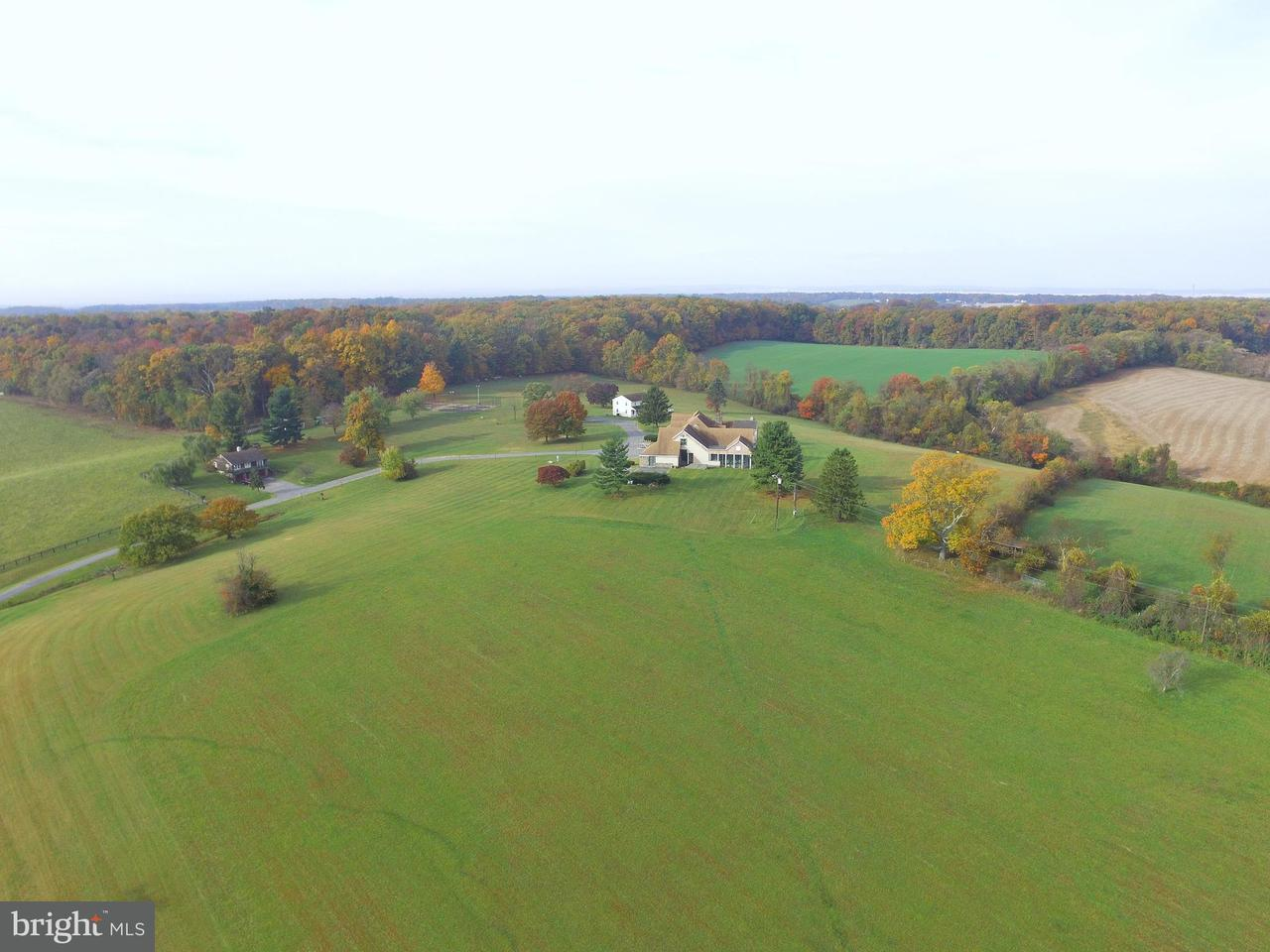 Additional photo for property listing at 17300 WHITES STORE Road 17300 WHITES STORE Road Boyds, Maryland 20841 United States