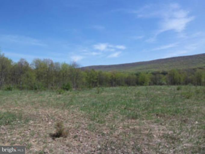 Land for Sale at Bamboo Lane Berkeley Springs, West Virginia 25411 United States