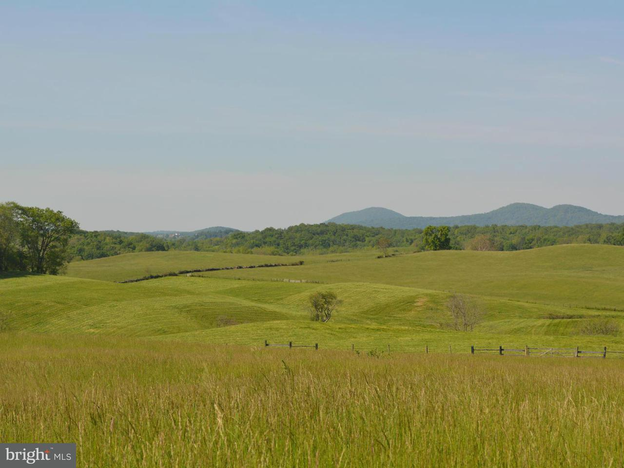 Additional photo for property listing at PARCEL C ROKEBY Road PARCEL C ROKEBY Road Upperville, Virginia 20184 United States