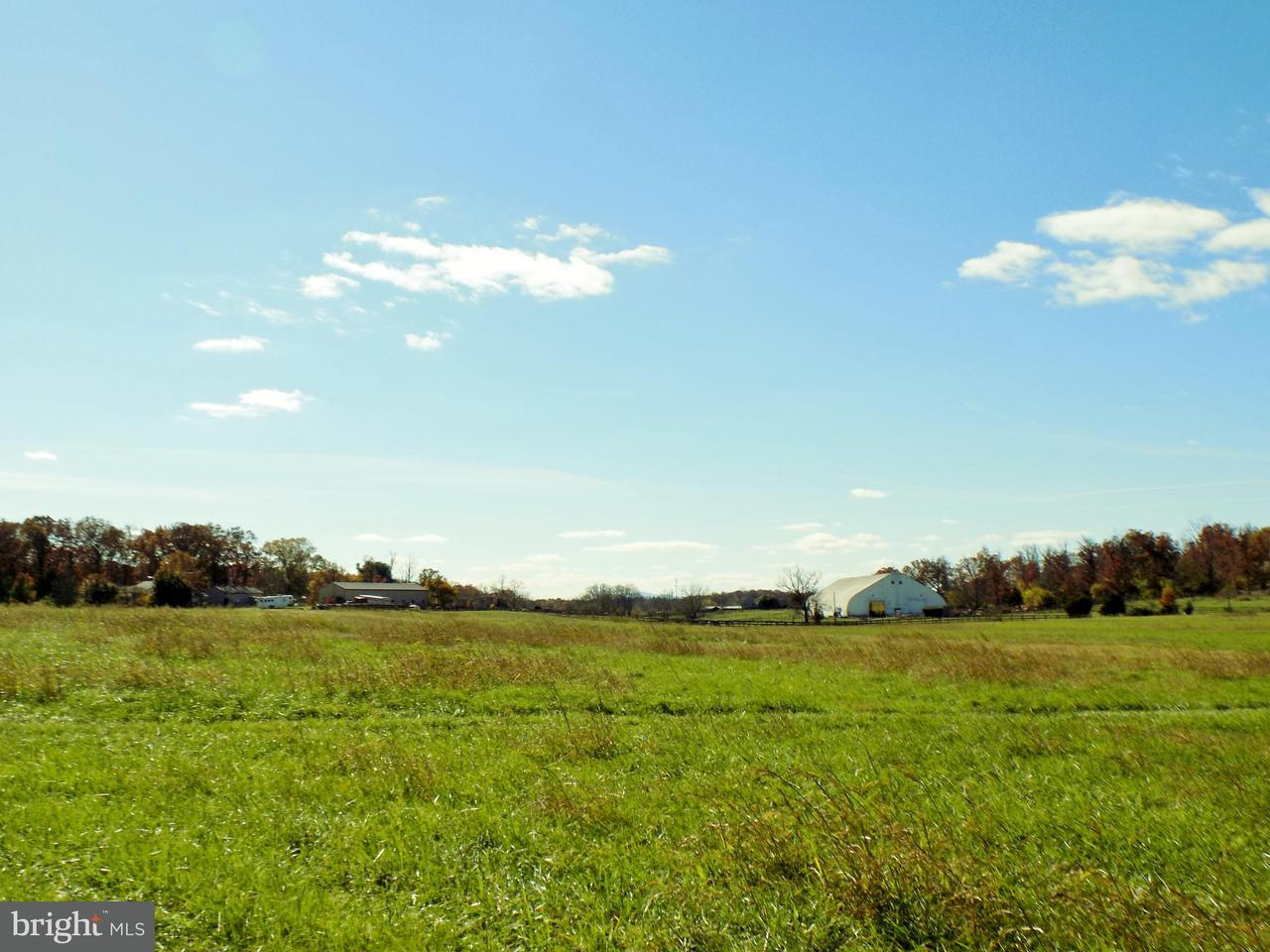 Land for Sale at FISHPAW Road FISHPAW Road Berryville, Virginia 22611 United States