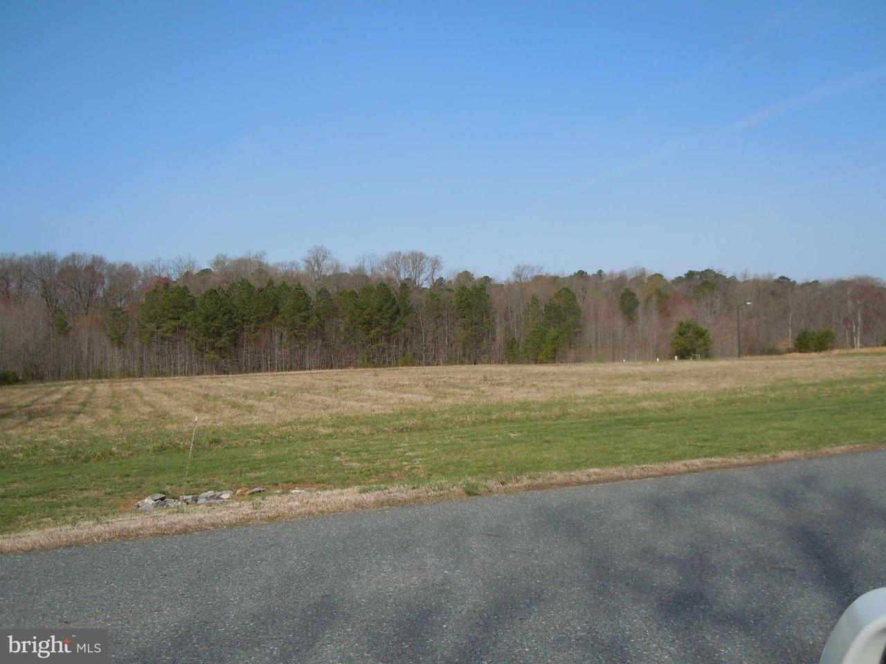 Additional photo for property listing at INFORMATION Lane INFORMATION Lane Easton, Maryland 21601 Stati Uniti