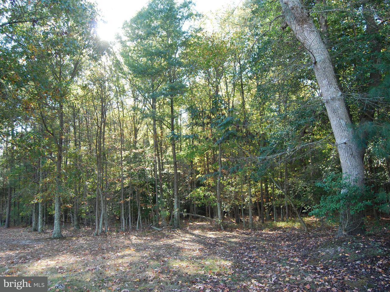 Terreno por un Venta en BOARMAN Road BOARMAN Road Newburg, Maryland 20664 Estados Unidos