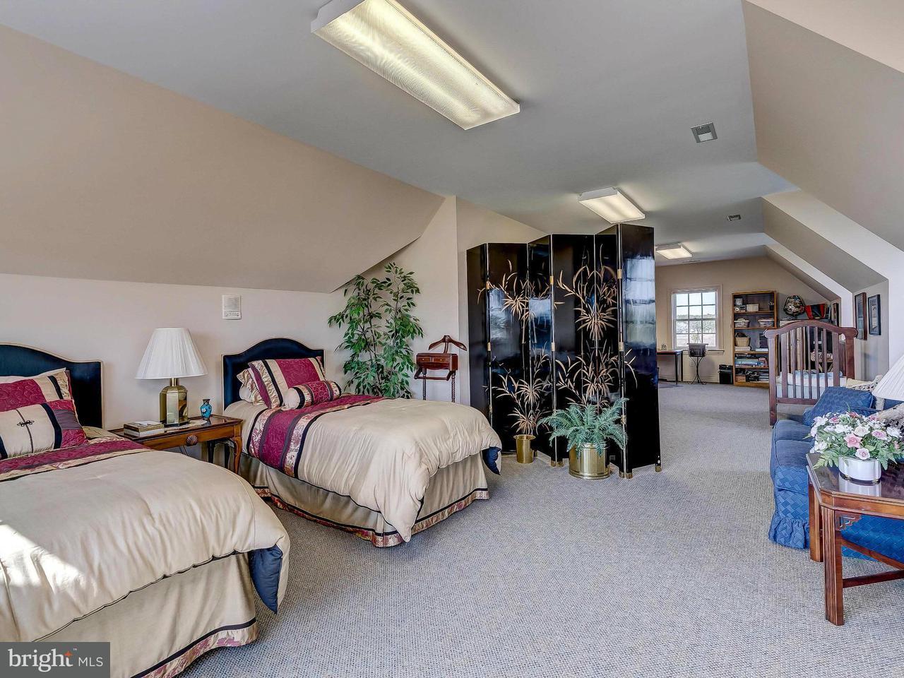 Additional photo for property listing at 5559 Cassons Neck Road 5559 Cassons Neck Road Cambridge, Μεριλαντ 21613 Ηνωμενεσ Πολιτειεσ