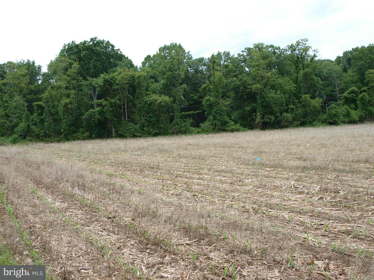 Additional photo for property listing at Jones Rd  Whiteford, Maryland 21160 United States