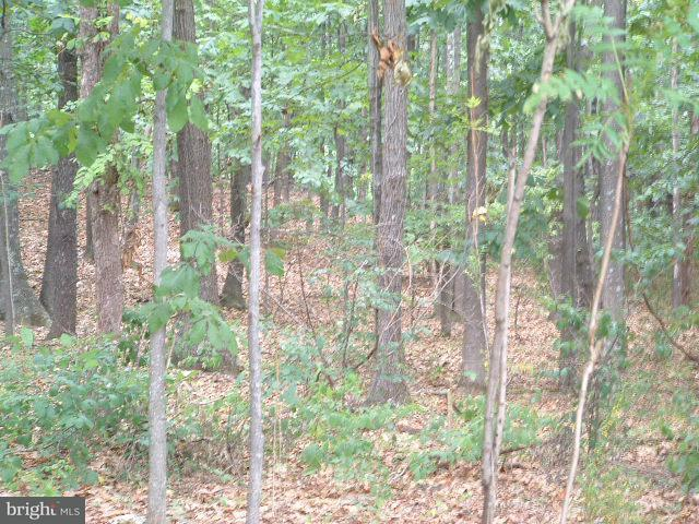 Land for Sale at Lot 11 Aztec Trail Winchester, Virginia 22602 United States