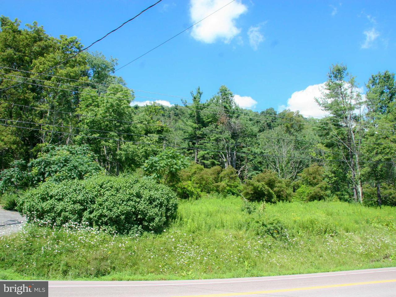 Additional photo for property listing at 21287 GARRETT HWY 21287 GARRETT HWY Mc Henry, Maryland 21541 Vereinigte Staaten