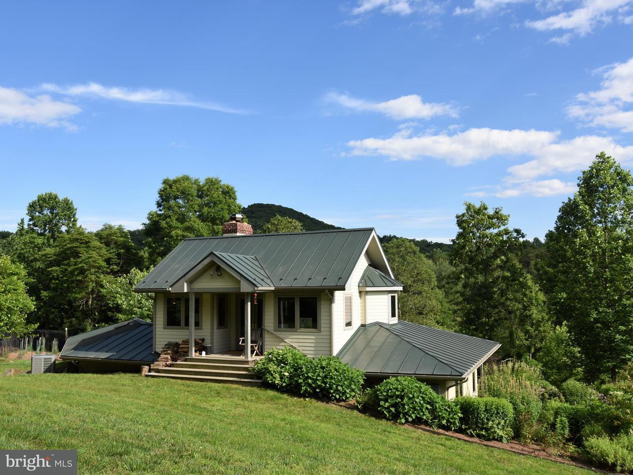 独户住宅 为 销售 在 821 LONG MOUNTAIN Road 821 LONG MOUNTAIN Road Washington, 弗吉尼亚州 22747 美国