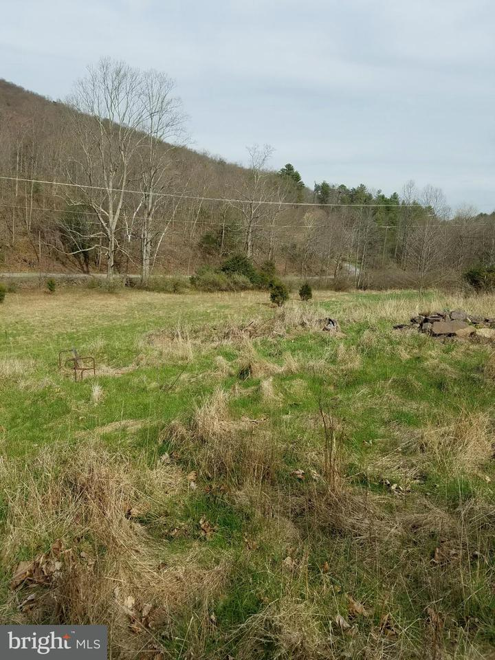 Land for Sale at Crtton Owl Hollow Rd Bloomery, West Virginia 26817 United States