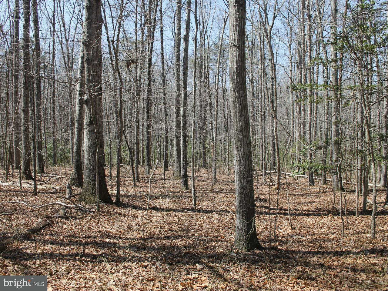 Land for Sale at Union Church Rd Sumerduck, Virginia 22742 United States