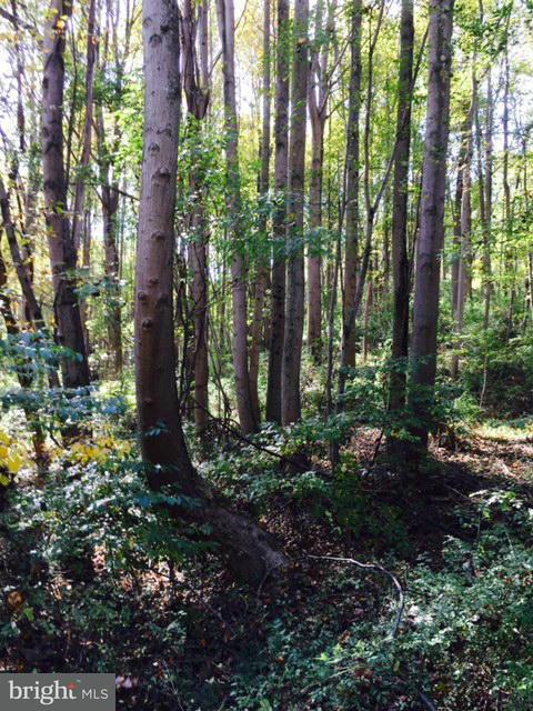 Land for Sale at Hoods Mill Rd Sw Hoods Mill Rd Sw Cooksville, Maryland 21723 United States