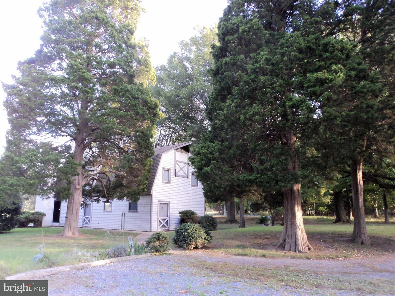 Ferme pour l Vente à 23505 Bozman Road 23505 Bozman Road Bozman, Maryland 21612 États-Unis