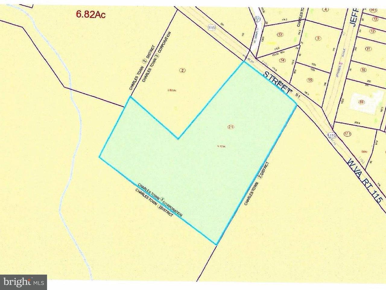 土地 为 销售 在 GEORGE ST S GEORGE ST S 查尔斯城, 西弗吉尼亚州 25414 美国