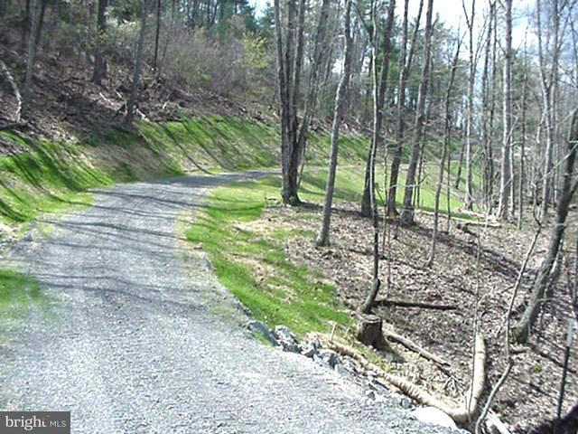 Land for Sale at Deep Run Hollow Rd Delray, West Virginia 26714 United States