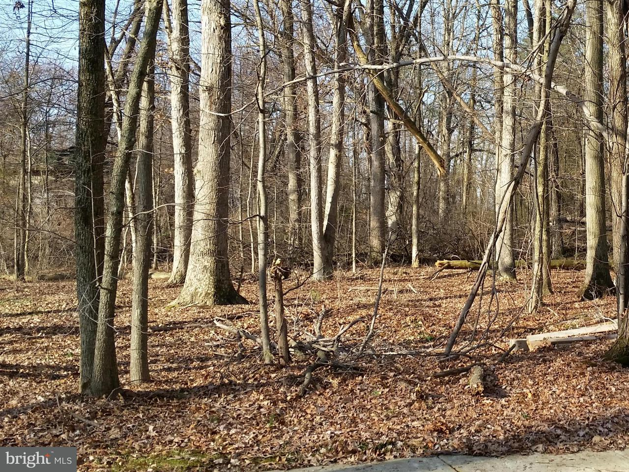 Land for Sale at 5309 KENDRA Drive 5309 KENDRA Drive Lanham, Maryland 20706 United States