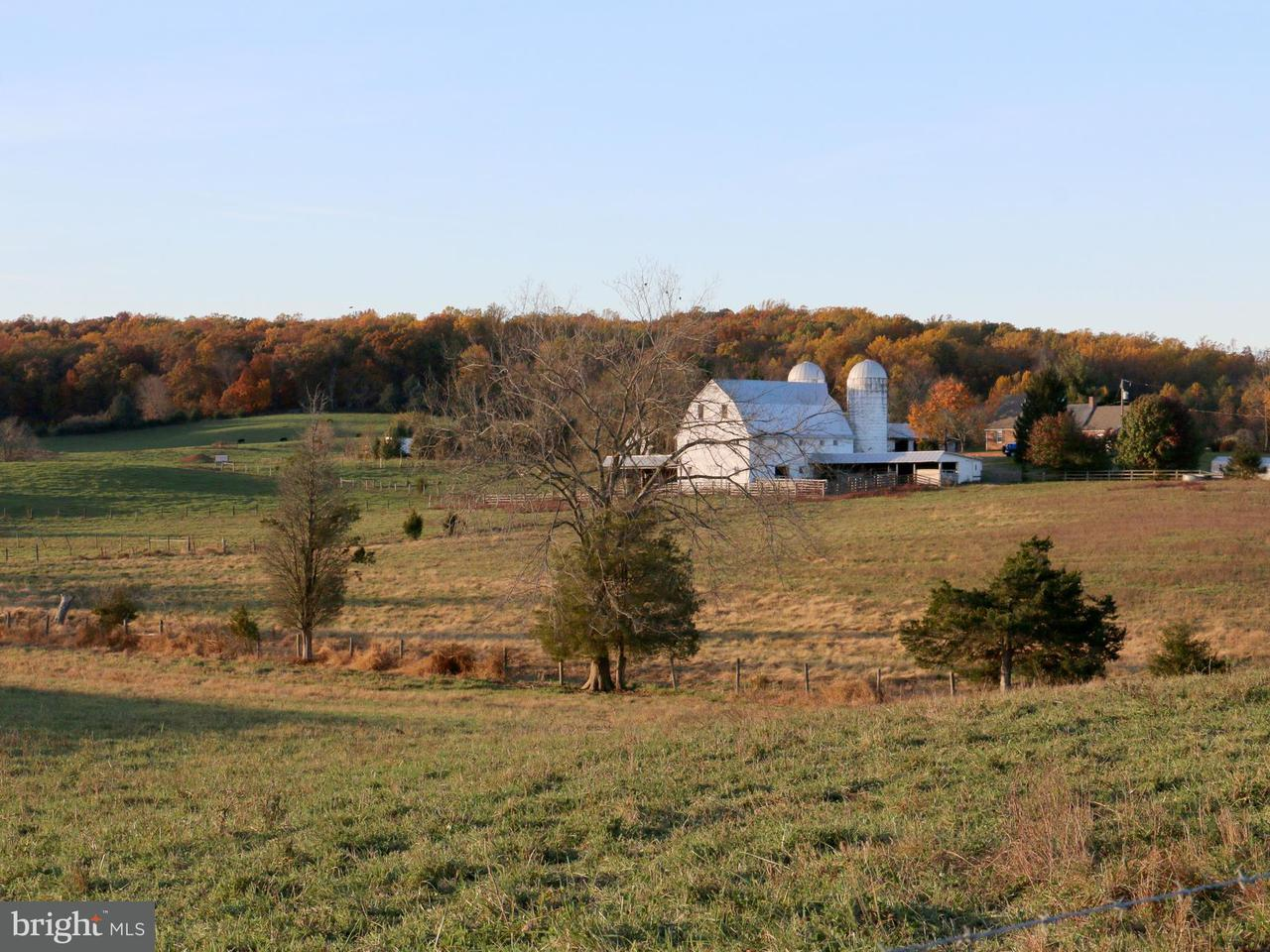 Farm for Sale at 4484 LEE HWY 4484 LEE HWY Warrenton, Virginia 20187 United States