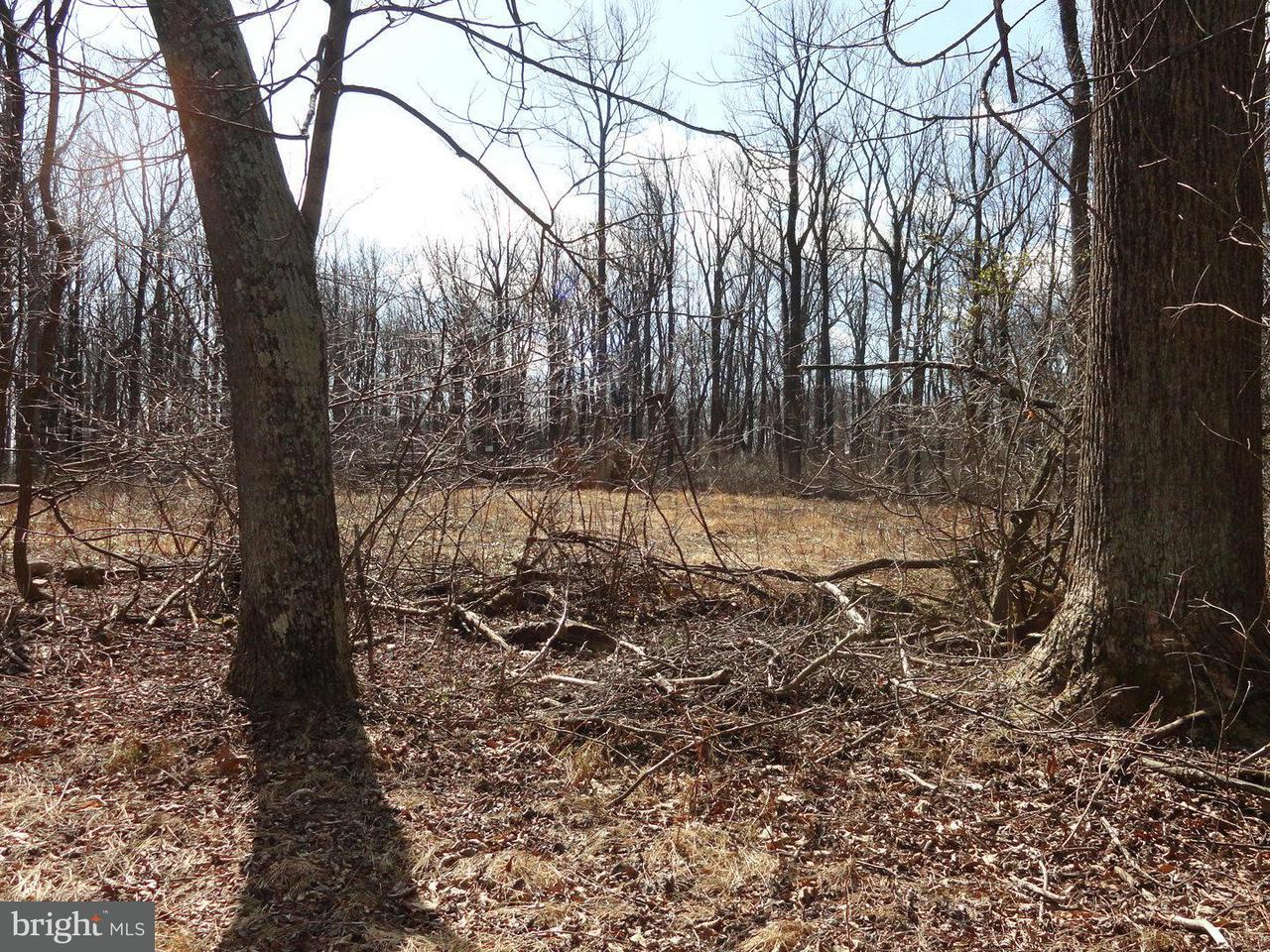 Land for Sale at Blue Ridge Mountain Rd Paris, Virginia 20130 United States
