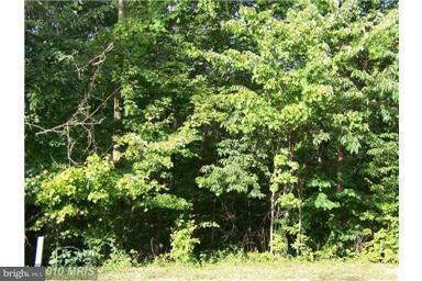 Land for Sale at Ellen Dr Basye, Virginia 22810 United States