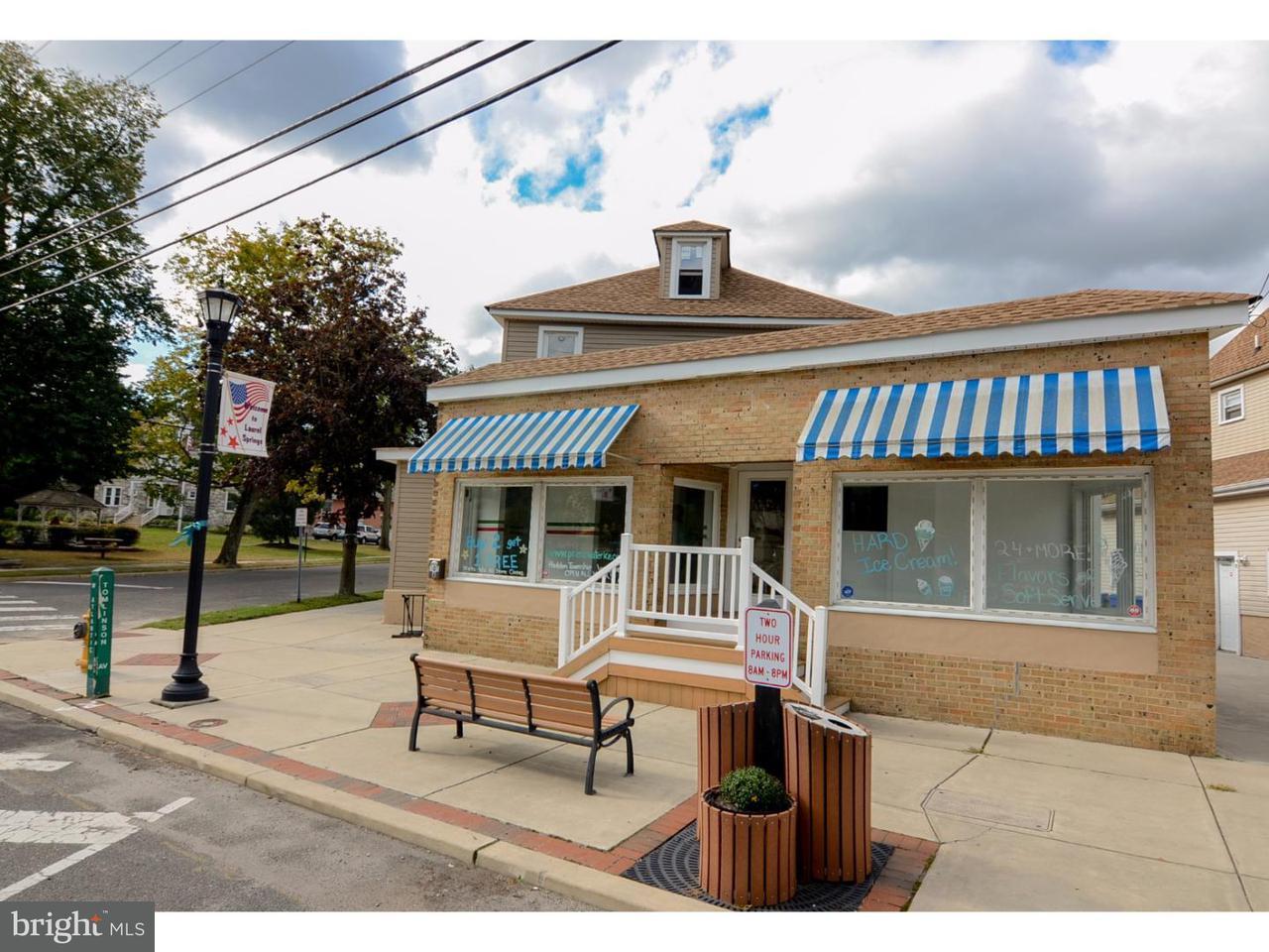 Maison unifamiliale pour l Vente à 801 W ATLANTIC Avenue Laurel Springs, New Jersey 08021 États-Unis