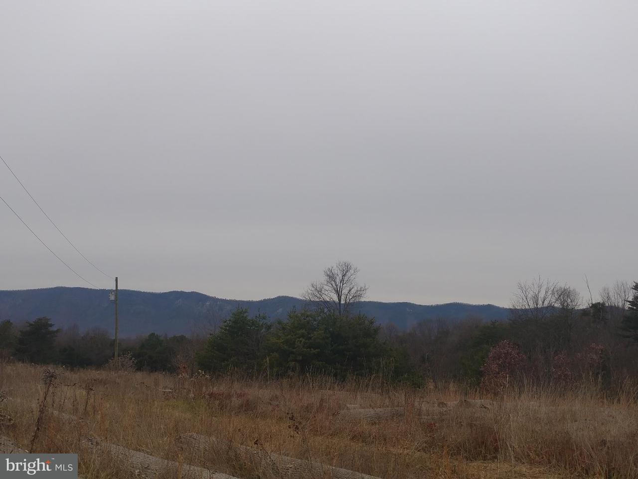 Villa per Vendita alle ore YOUNG Road YOUNG Road Rileyville, Virginia 22650 Stati Uniti