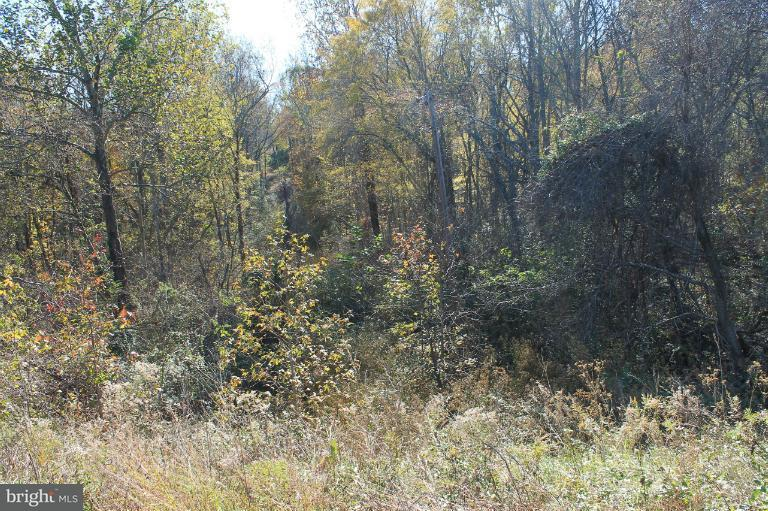 Land for Sale at 13090 Budds Creek Rd Charlotte Hall, Maryland 20622 United States