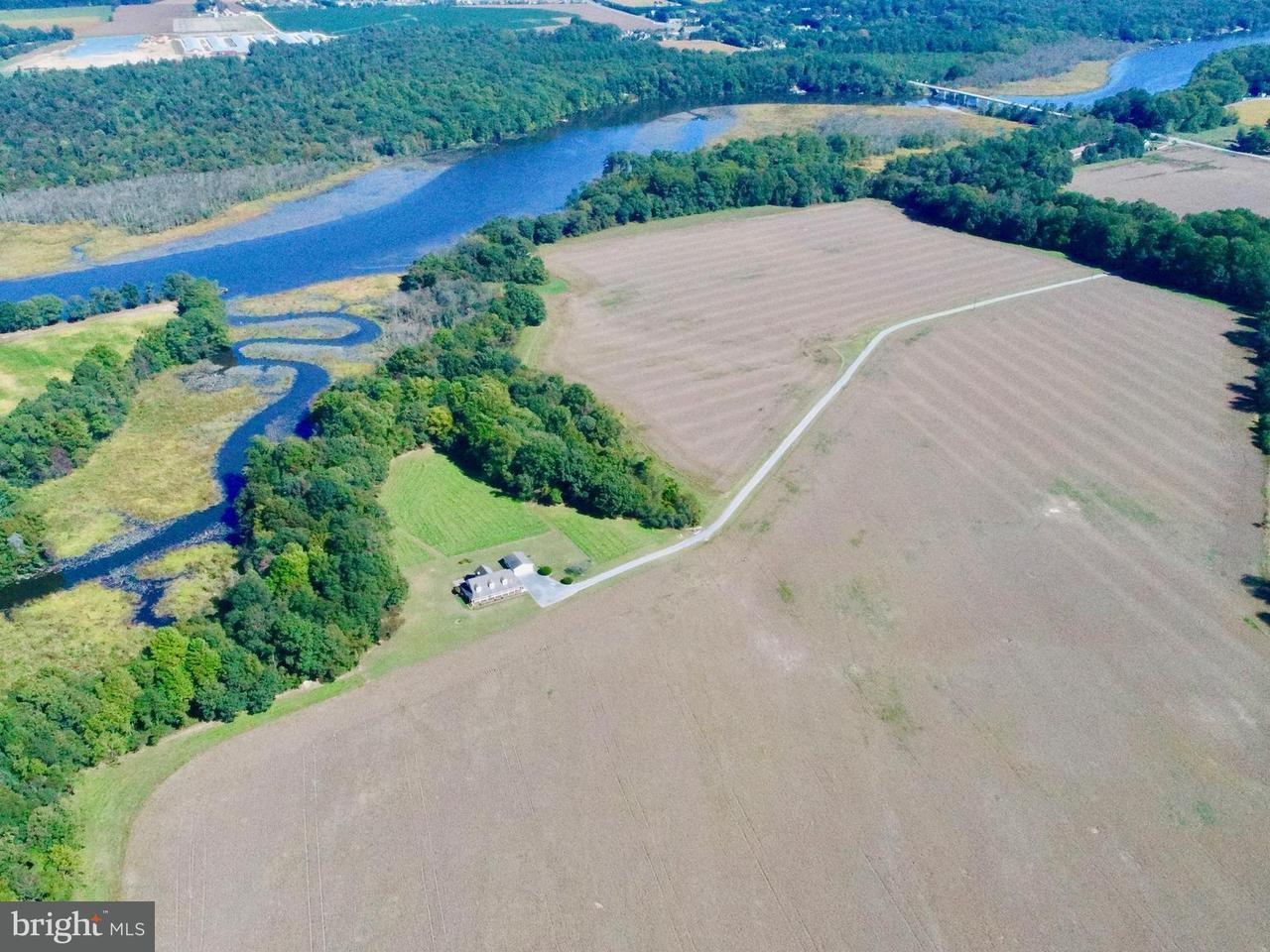 Granja por un Venta en 1 HIGHFIELD 1 HIGHFIELD Easton, Maryland 21601 Estados Unidos