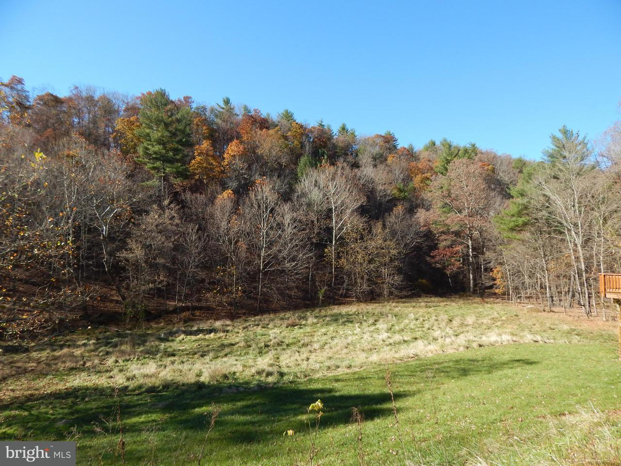 Land for Sale at Cacapon Road Cacapon Road Great Cacapon, West Virginia 25422 United States