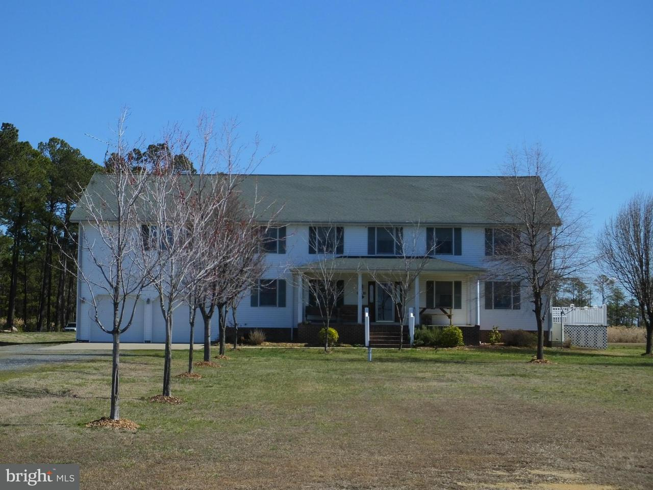 Farm for Sale at 2613 Hoopers Island Rd Fishing Creek, Maryland 21634 United States