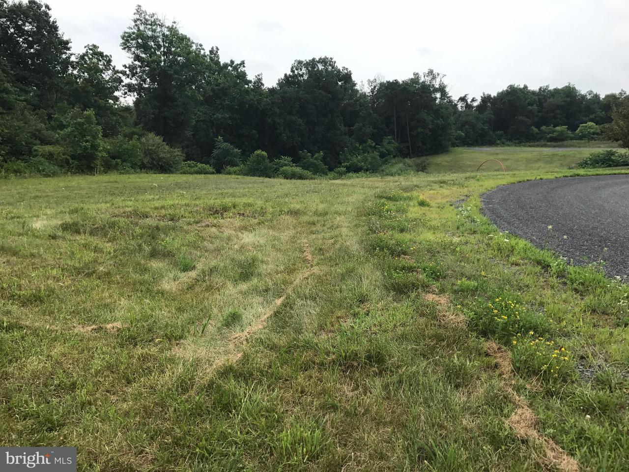 Land for Sale at Spring Bloom Ct St. Thomas, Pennsylvania 17252 United States