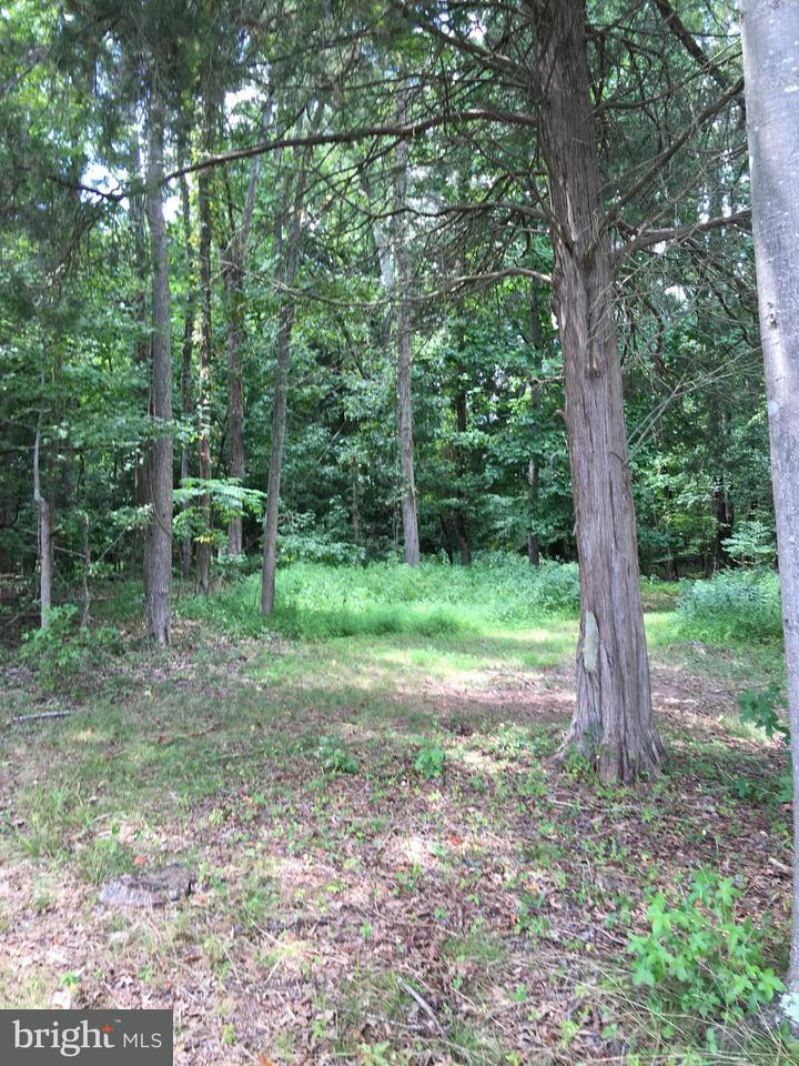 Land for Sale at 11510 Duckettown Rd Glenn Dale, Maryland 20769 United States