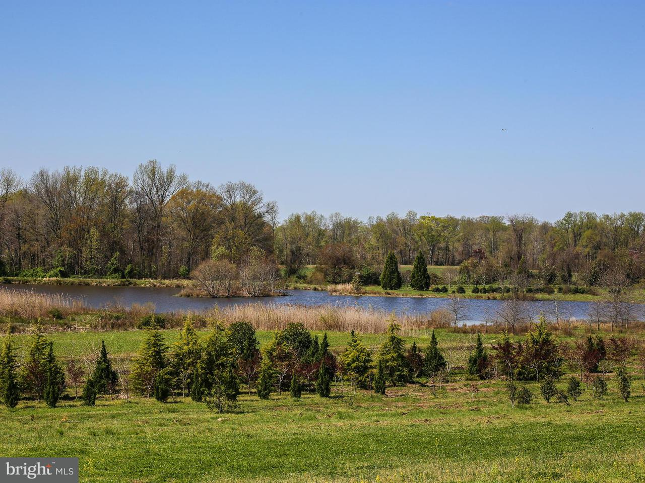 Terreno por un Venta en 12474 STILL POND Road 12474 STILL POND Road Still Pond, Maryland 21667 Estados Unidos