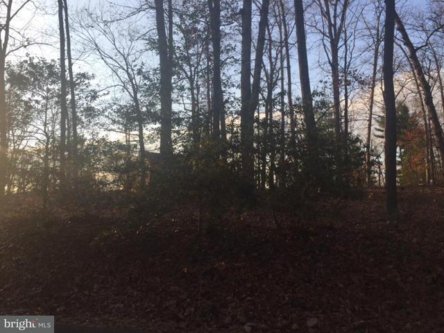 Land for Sale at 998 MANNING Street 998 MANNING Street Great Falls, Virginia 22066 United States