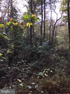 Vivienda unifamiliar por un Venta en Thompson Farm Trail Thompson Farm Trail Sumerduck, Virginia 22742 Estados Unidos