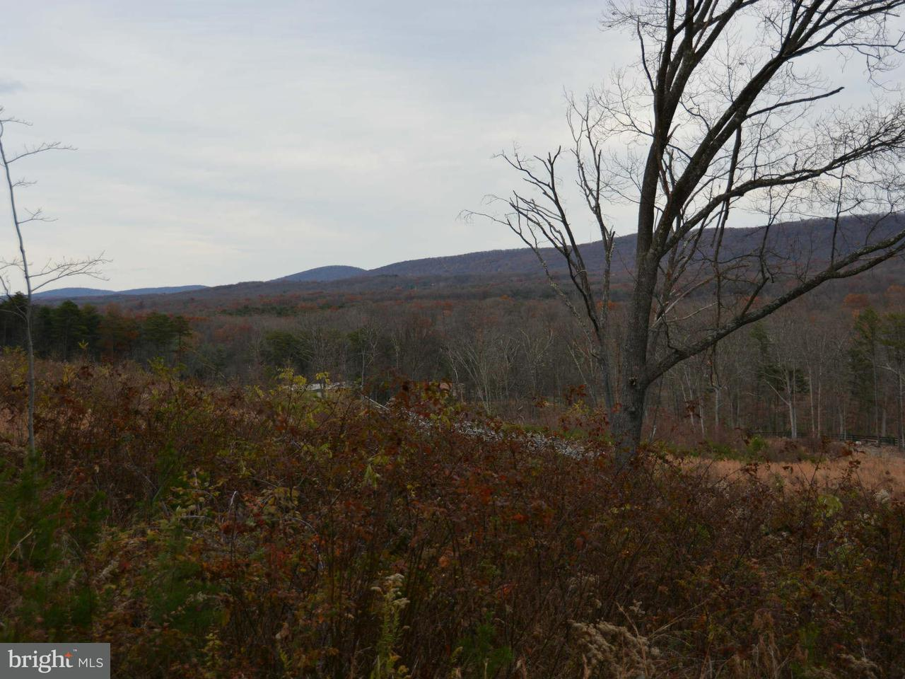 Additional photo for property listing at 244 Gough Rd  Winchester, Virginia 22602 United States