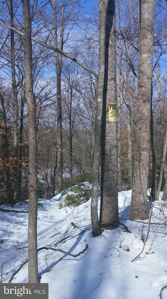 Additional photo for property listing at NOT ON FILE NOT ON FILE Milford, Virginia 22514 Estados Unidos