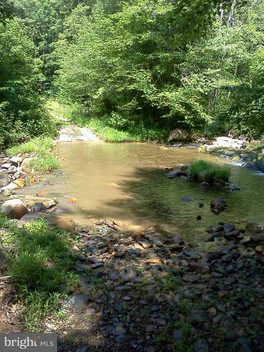 Land for Sale at Naked Creek Rd Luray, Virginia 22835 United States
