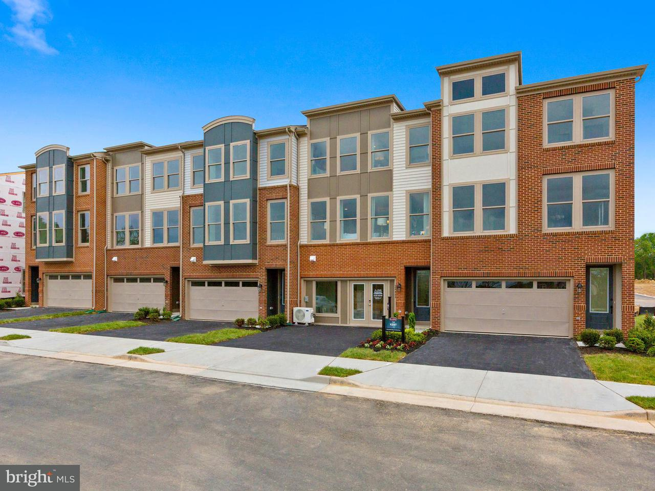 Single Family for Sale at 32262 Juniper Wood Ter Dulles, Virginia 20166 United States